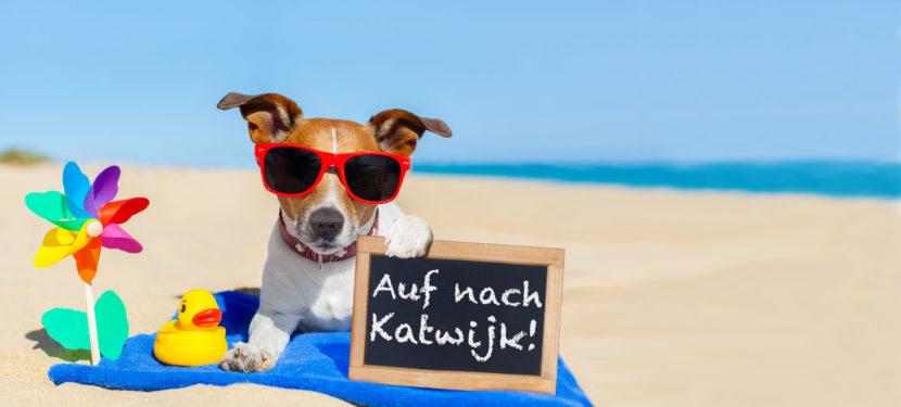 Mit Hund nach Katwijk